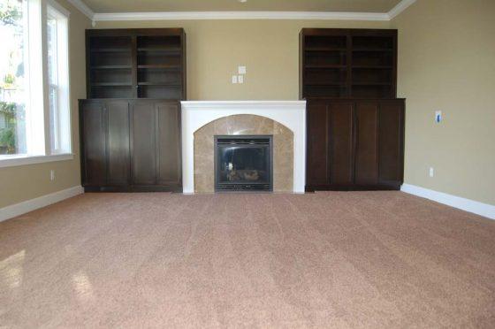 Fireplace Livingroom - Summa Homes